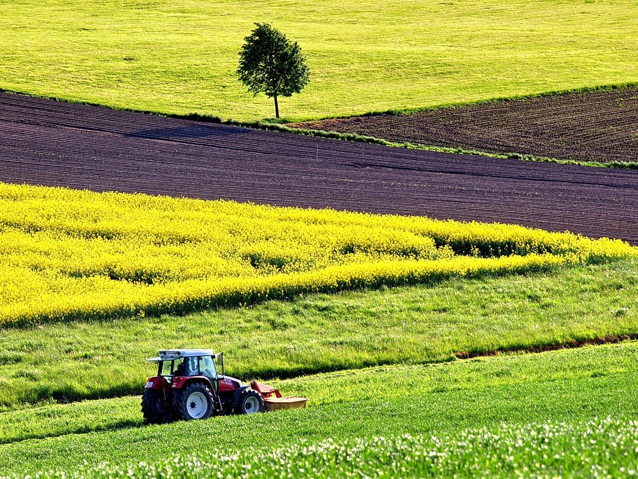 公務員が副業で家業の農業を続けるには?